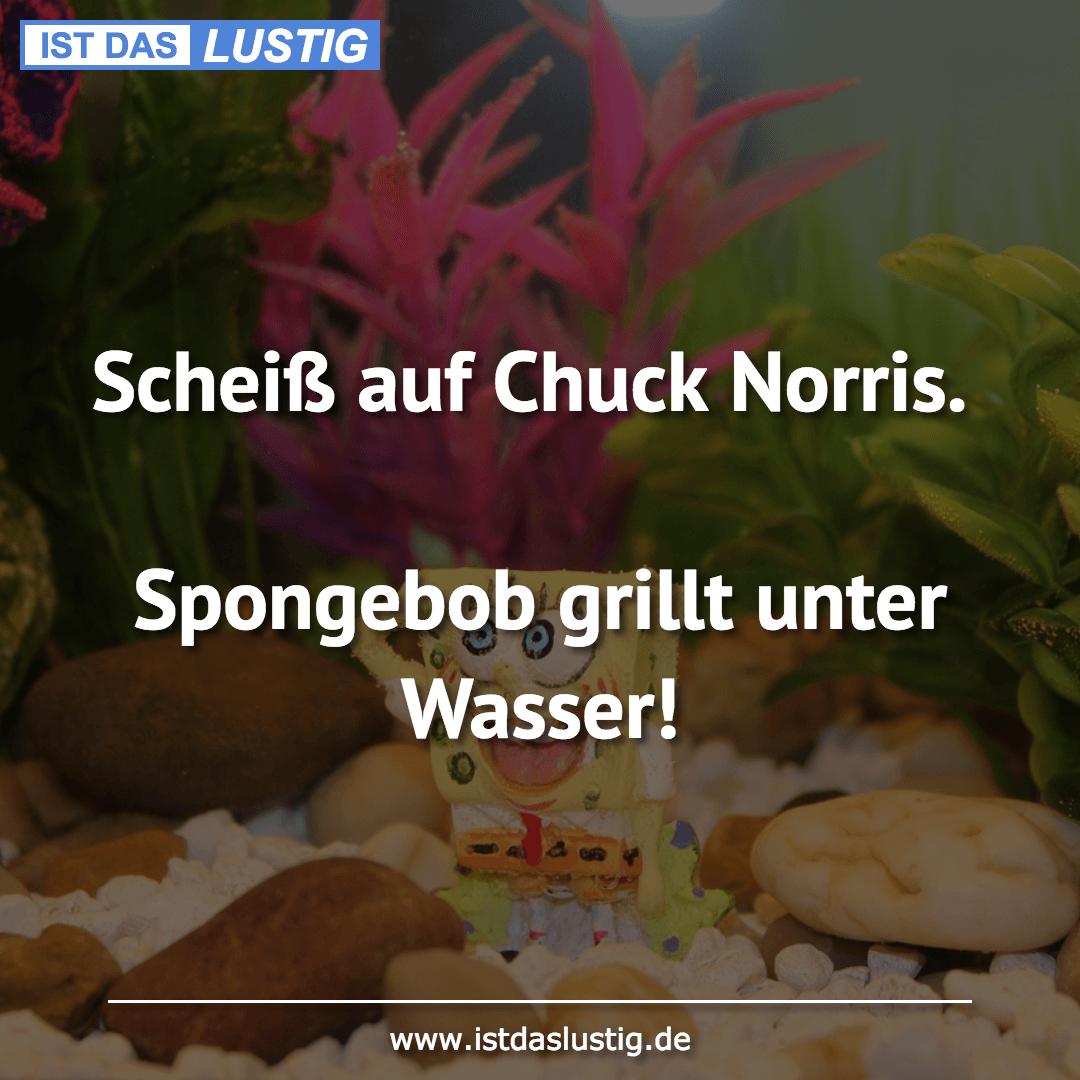 Lustiger BilderSpruch - Scheiß auf Chuck Norris.  Spongebob grillt...
