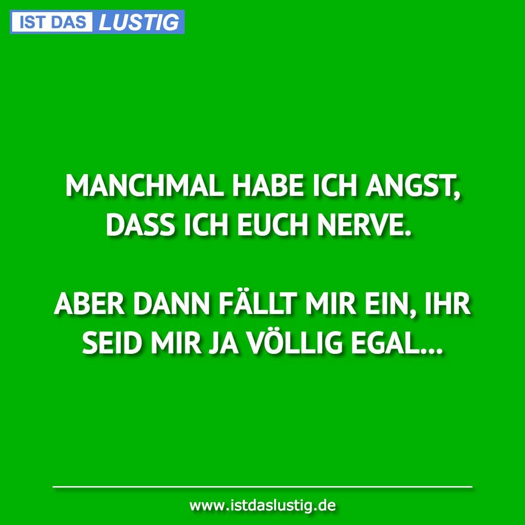 Lustiger BilderSpruch - MANCHMAL HABE ICH ANGST, DASS ICH EUCH NERVE....
