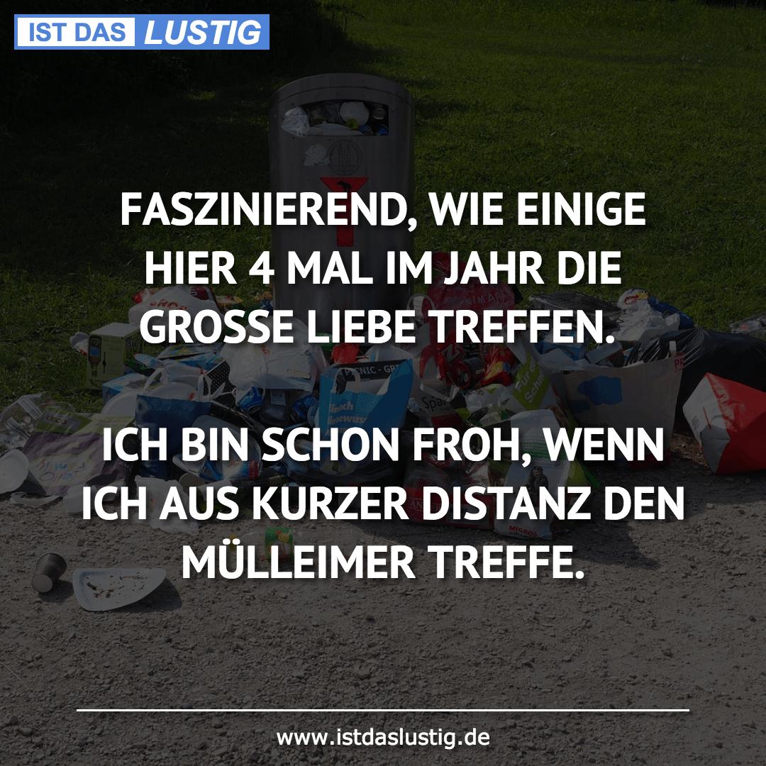 Lustiger BilderSpruch - FASZINIEREND, WIE EINIGE HIER 4 MAL IM JAHR DIE...