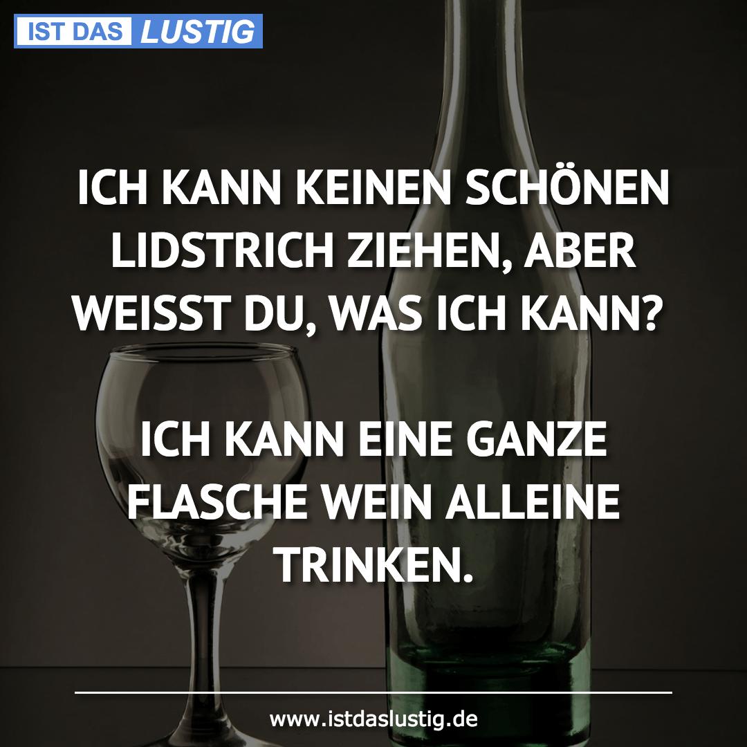 Lustiger BilderSpruch - ICH KANN KEINEN SCHÖNEN LIDSTRICH ZIEHEN, ABER...