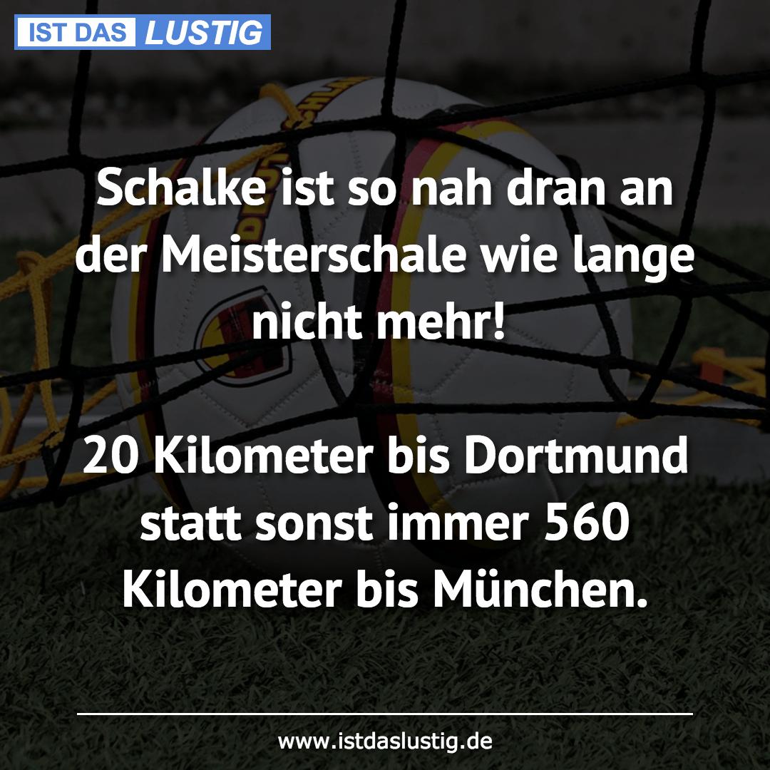 Lustiger BilderSpruch - Schalke ist so nah dran an der Meisterschale...