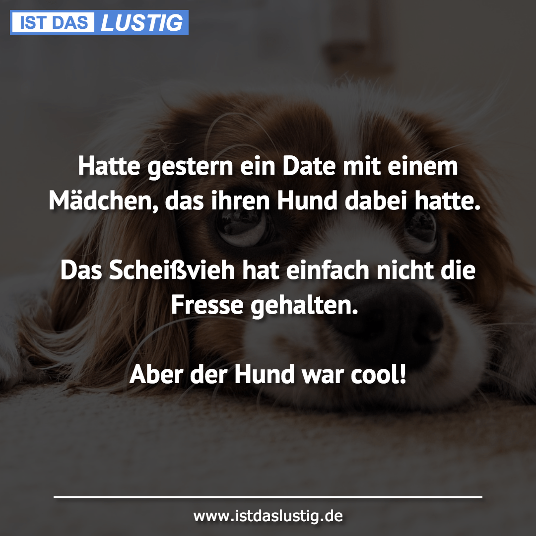 Lustige Internet-Dating-memes