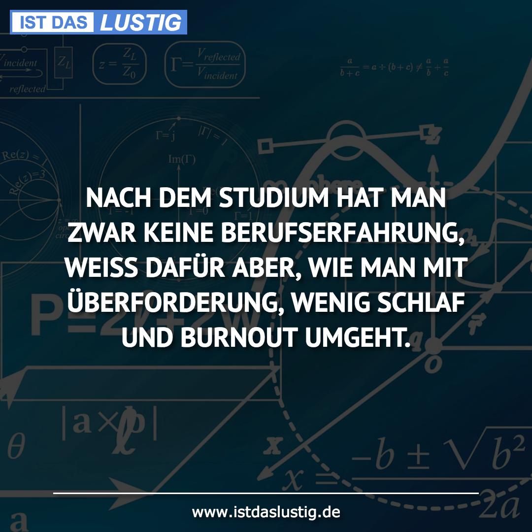 Lustiger BilderSpruch - NACH DEM STUDIUM HAT MAN ZWAR KEINE BERUFSERFAH...
