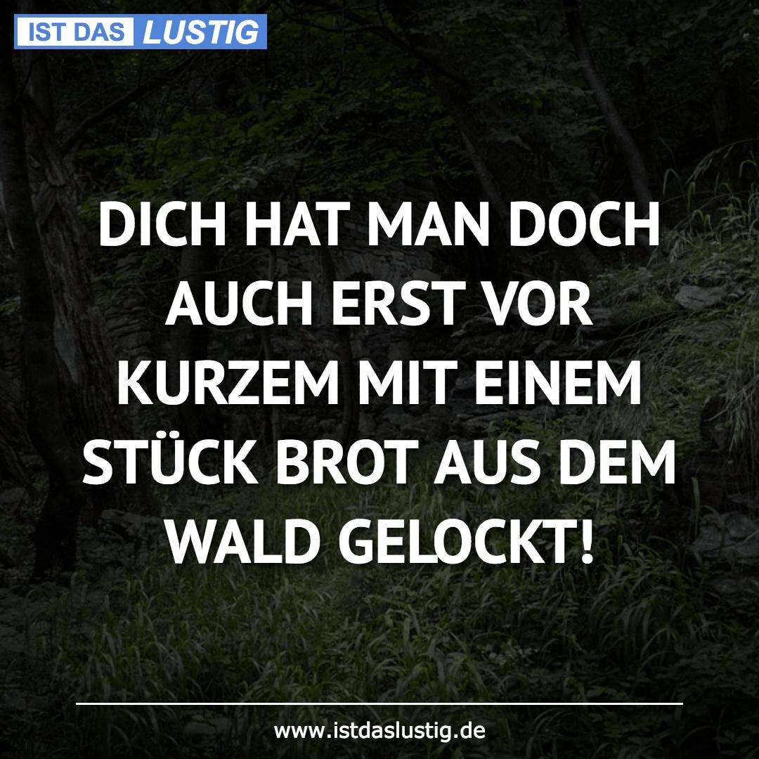 Lustiger BilderSpruch - DICH HAT MAN DOCH AUCH ERST VOR KURZEM MIT EINE...