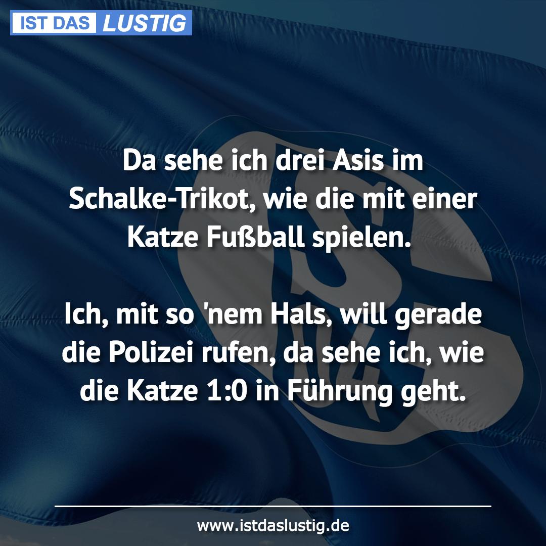 Lustiger BilderSpruch - Da sehe ich drei Asis im Schalke-Trikot, wie di...