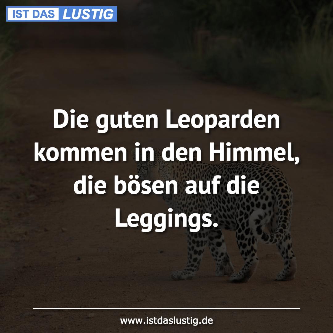 Lustiger BilderSpruch - Die guten Leoparden kommen in den Himmel, die...
