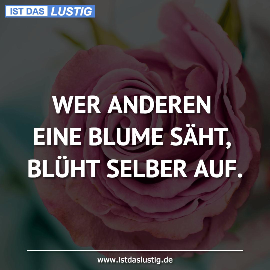 Lustiger BilderSpruch - WER ANDEREN EINE BLUME SÄHT, BLÜHT SELBER AUF.