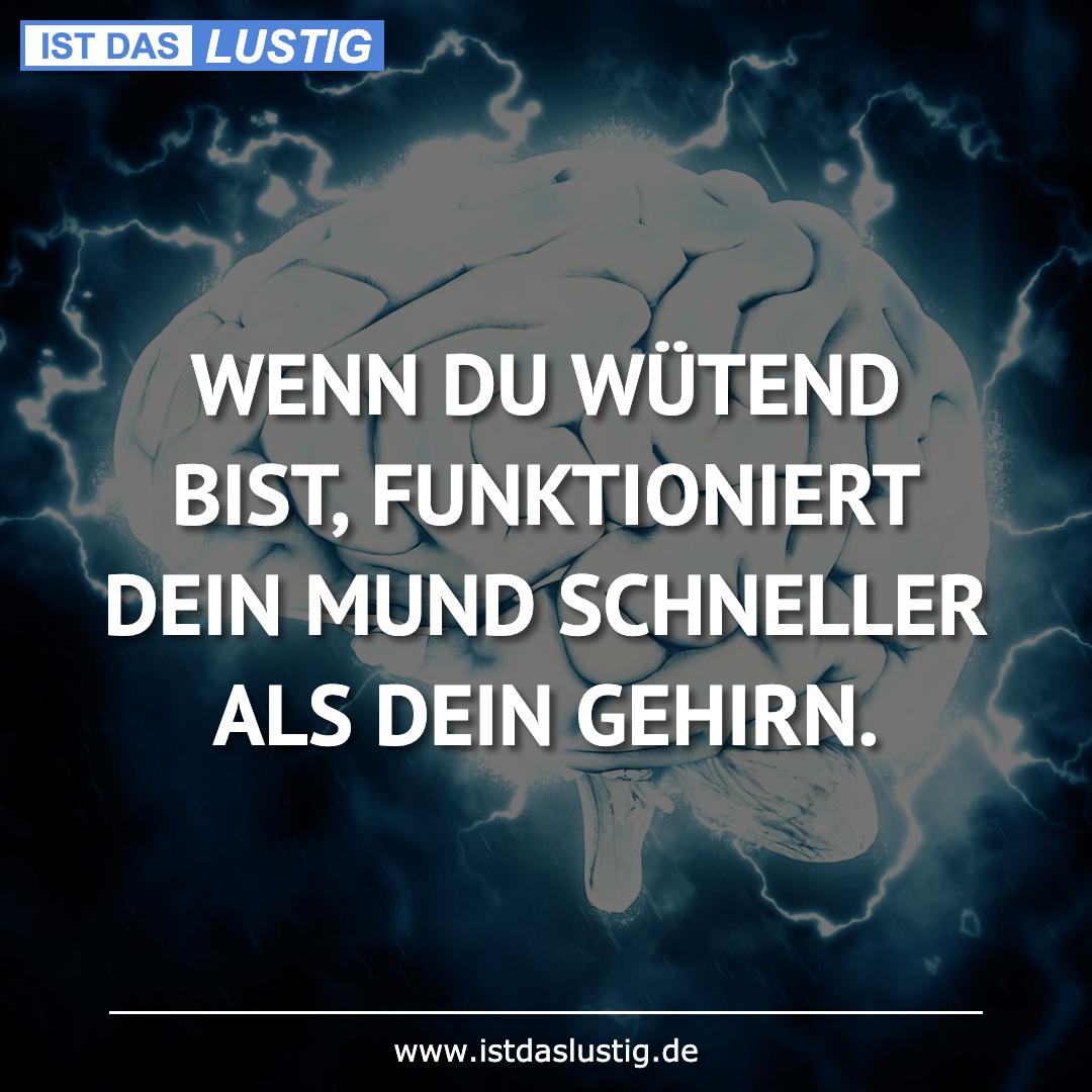 Lustiger BilderSpruch - WENN DU WÜTEND BIST, FUNKTIONIERT DEIN MUND...