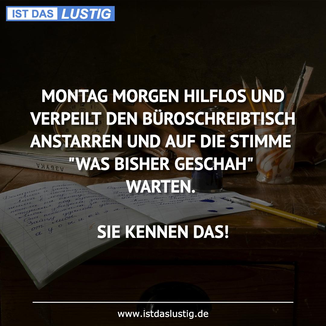 Lustiger BilderSpruch - MONTAG MORGEN HILFLOS UND VERPEILT DEN BÜROSCHR...