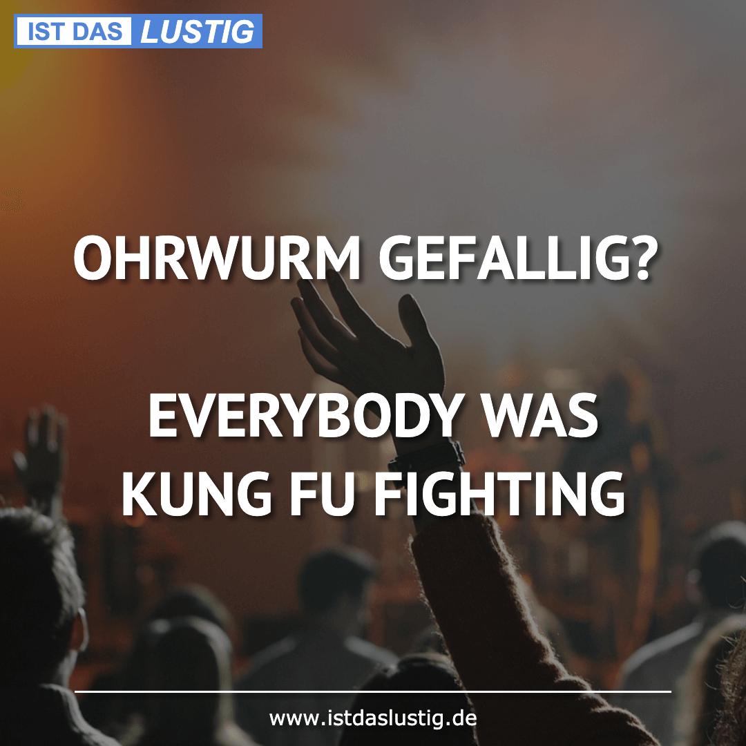 Lustiger BilderSpruch - OHRWURM GEFALLIG?  EVERYBODY WAS KUNG FU FIGHTING