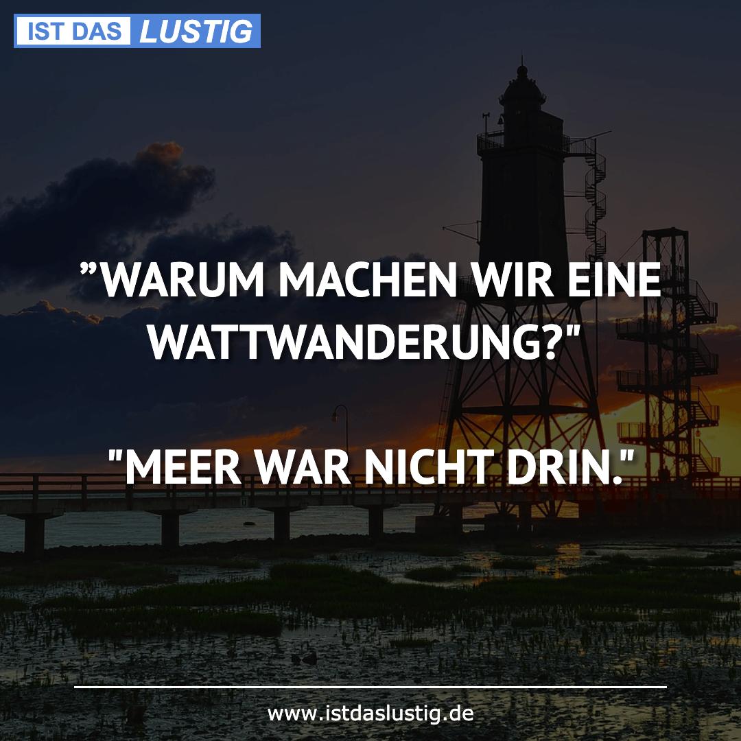 """Lustiger BilderSpruch - """"WARUM MACHEN WIR EINE WATTWANDERUNG?""""  """"MEER..."""