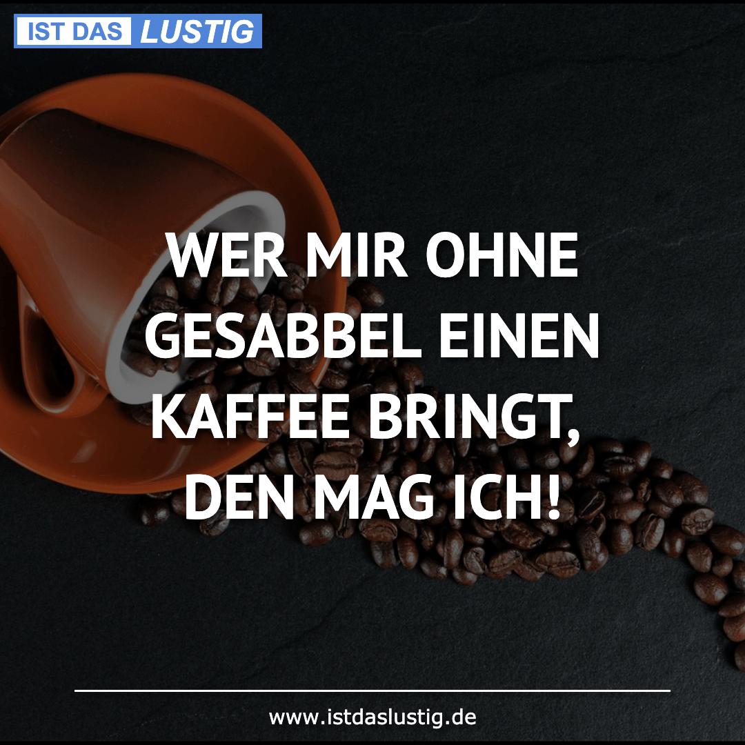 Lustiger BilderSpruch - WER MIR OHNE GESABBEL EINEN KAFFEE BRINGT, DEN...