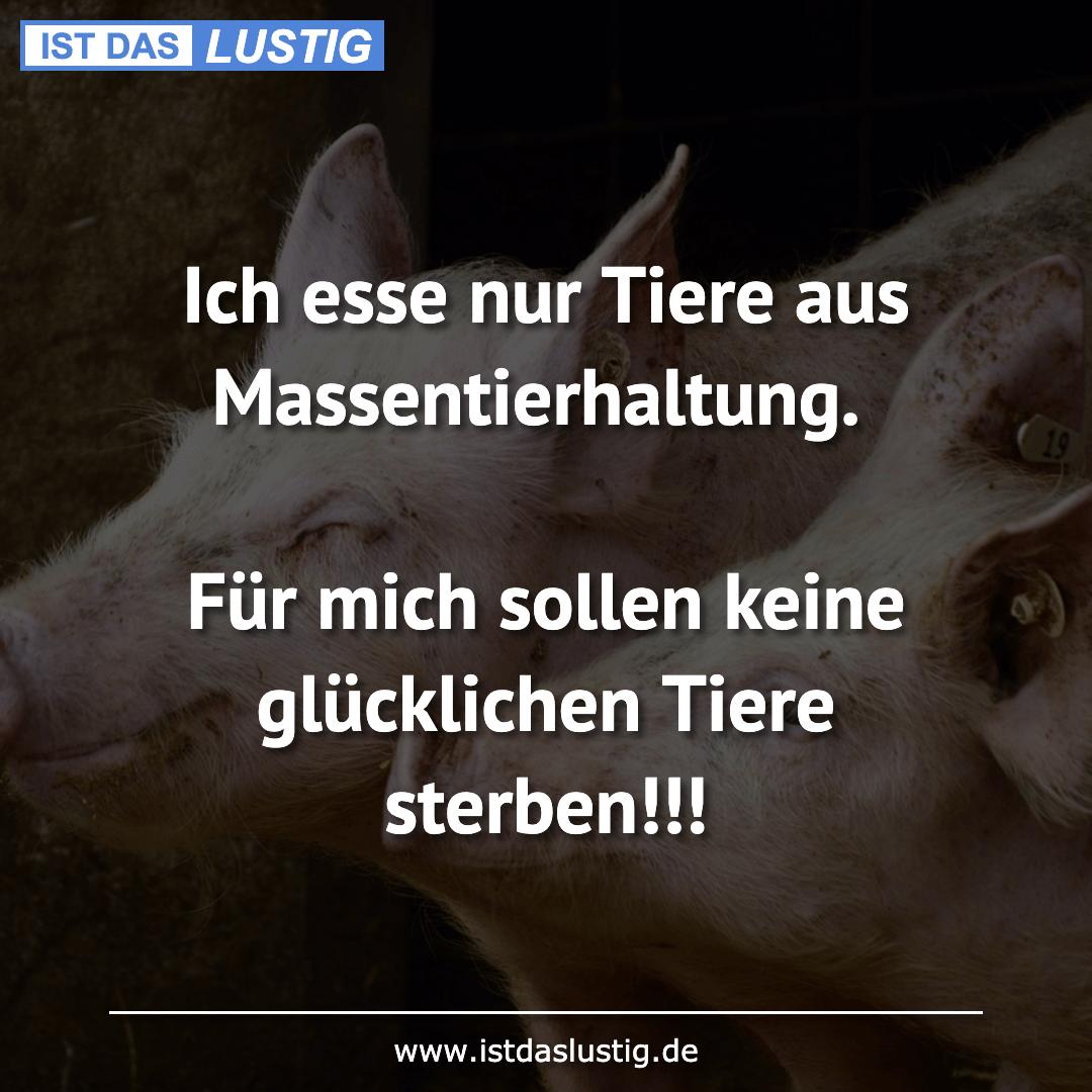 Lustiger BilderSpruch - Ich esse nur Tiere aus Massentierhaltung.  Für ...