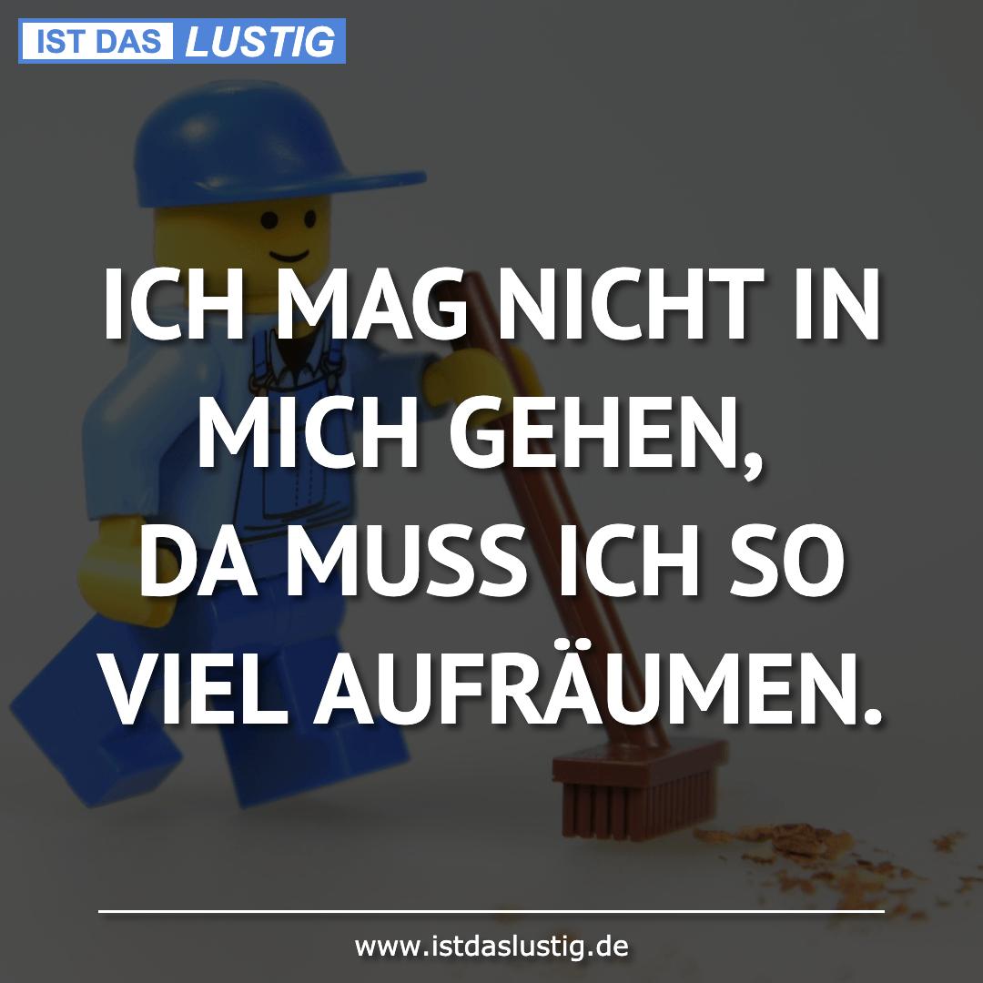 Lustiger BilderSpruch - ICH MAG NICHT IN MICH GEHEN, DA MUSS ICH SO...