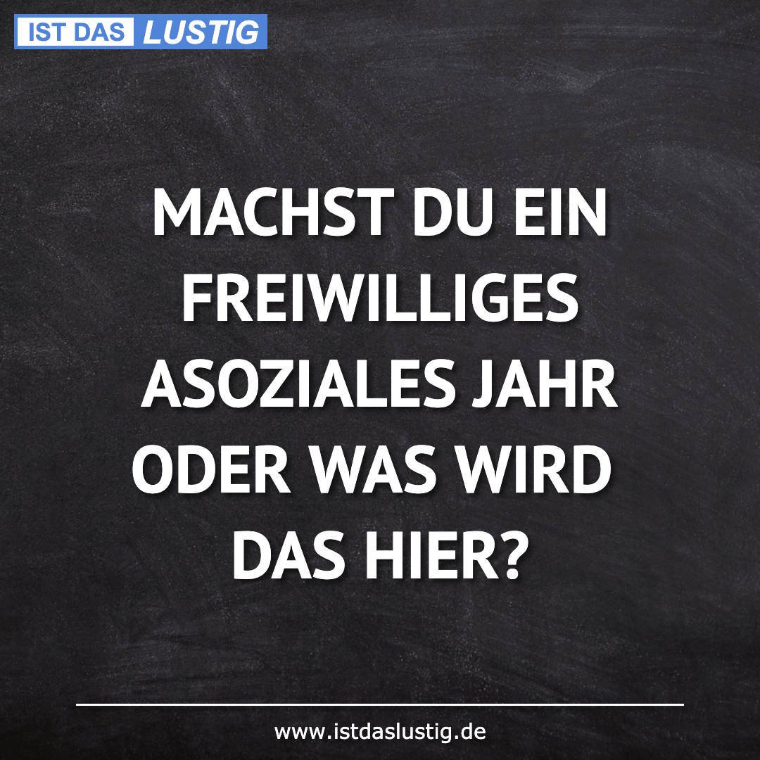 Lustiger BilderSpruch - MACHST DU EIN FREIWILLIGES ASOZIALES JAHR ODER...