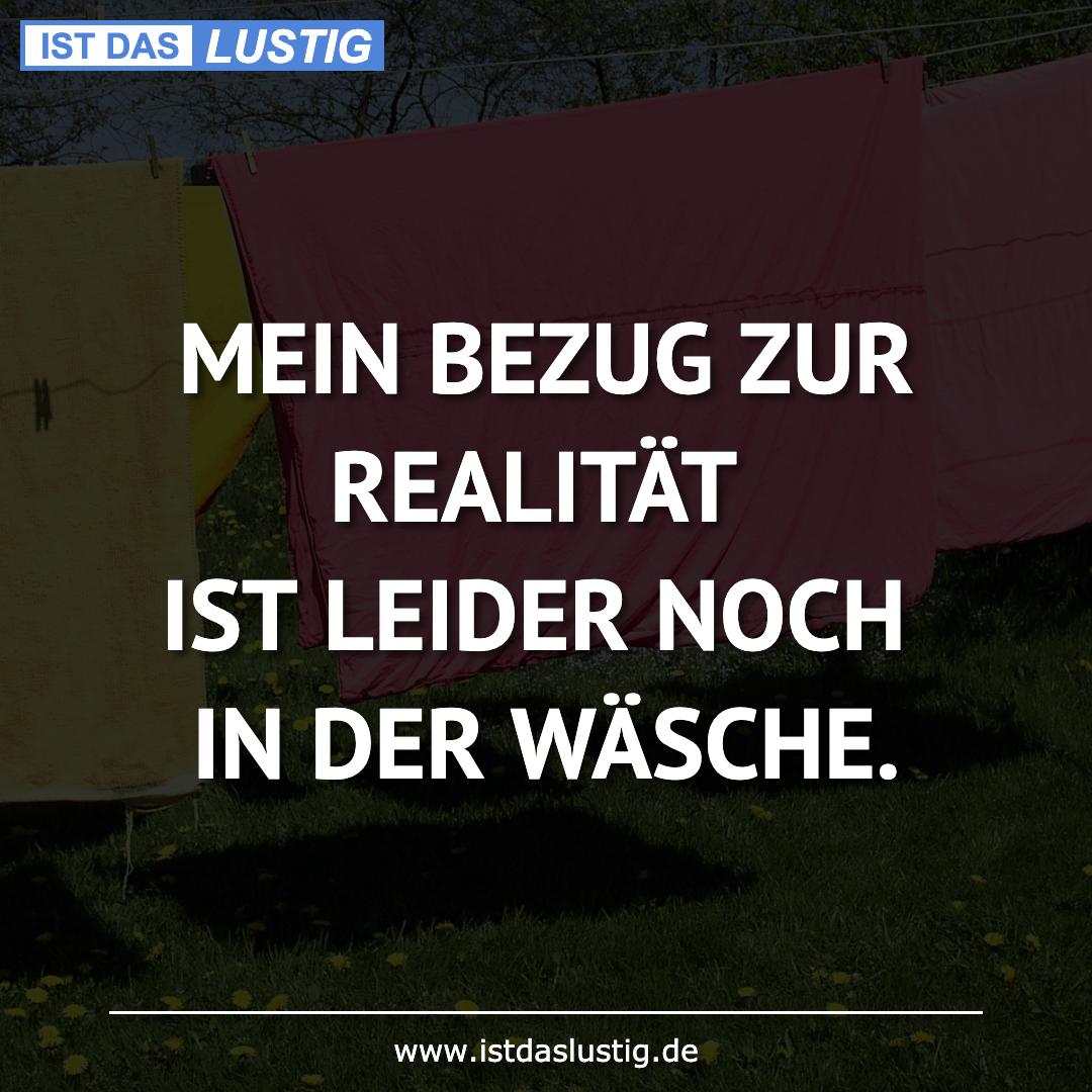 Lustiger BilderSpruch - MEIN BEZUG ZUR REALITÄT IST LEIDER NOCH IN DER...