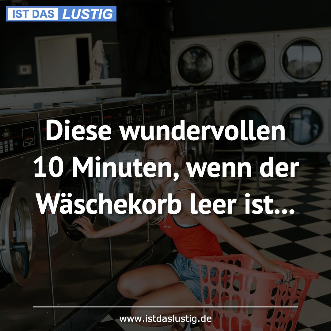 Lustiger BilderSpruch - Diese wundervollen 10 Minuten, wenn der Wäschek...