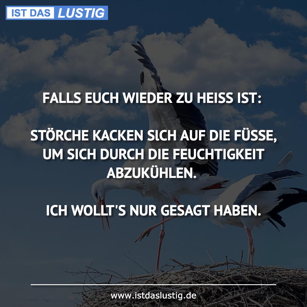 Lustiger BilderSpruch - FALLS EUCH WIEDER ZU HEISS IST:  STÖRCHE KACKEN...