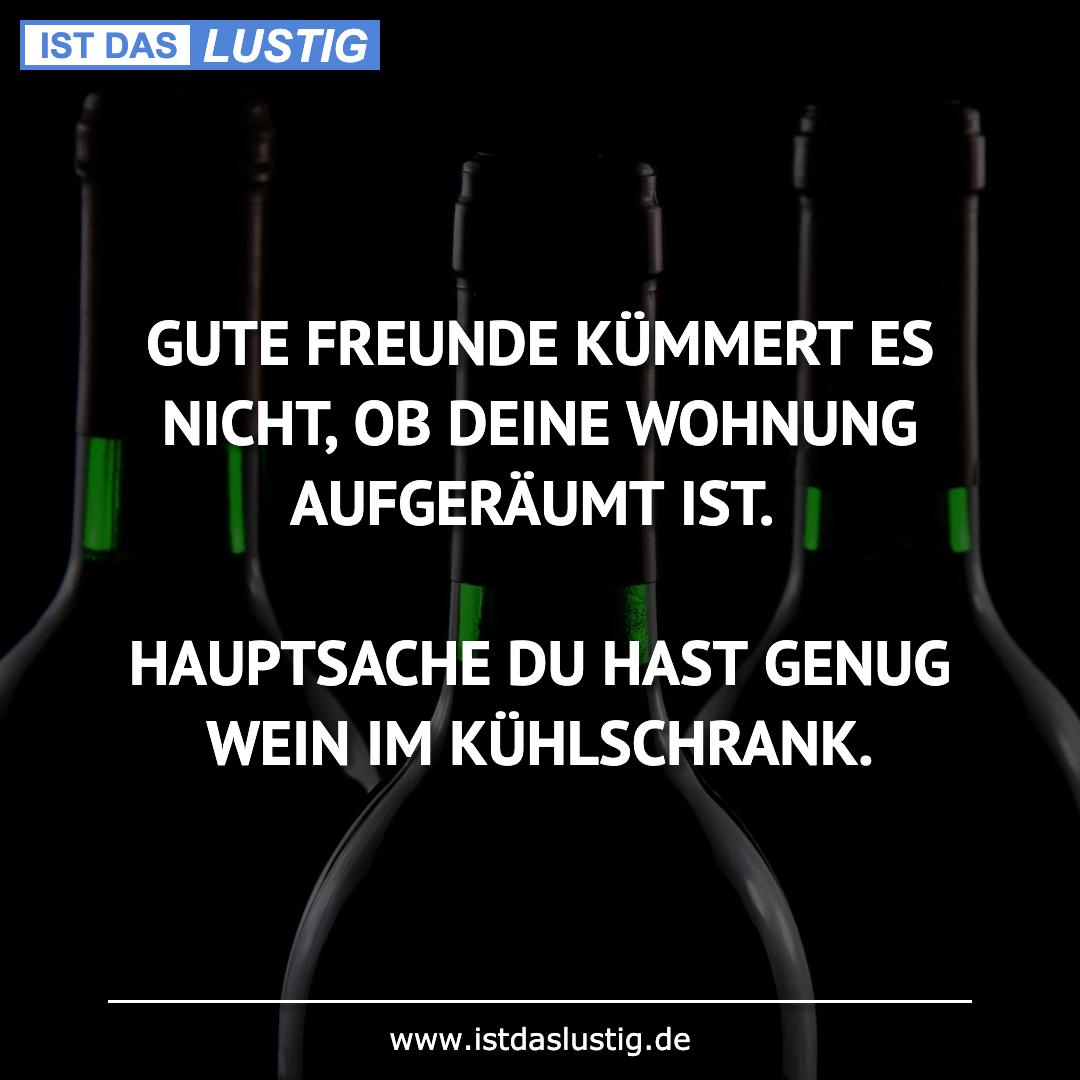 Lustiger BilderSpruch - GUTE FREUNDE KÜMMERT ES NICHT, OB DEINE WOHNUNG...