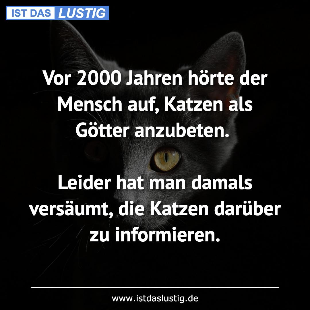 Lustiger BilderSpruch - Vor 2000 Jahren hörte der Mensch auf, Katzen al...