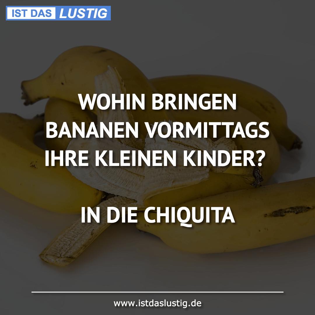 Lustiger BilderSpruch - WOHIN BRINGEN BANANEN VORMITTAGS IHRE KLEINEN...