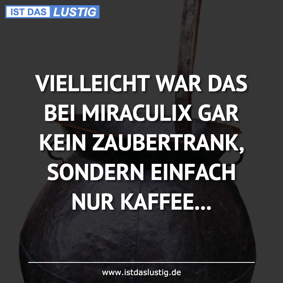 Lustiger BilderSpruch - VIELLEICHT WAR DAS BEI MIRACULIX GAR KEIN...