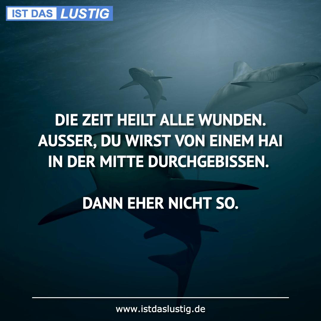 Lustiger BilderSpruch - DIE ZEIT HEILT ALLE WUNDEN. AUSSER, DU WIRST...