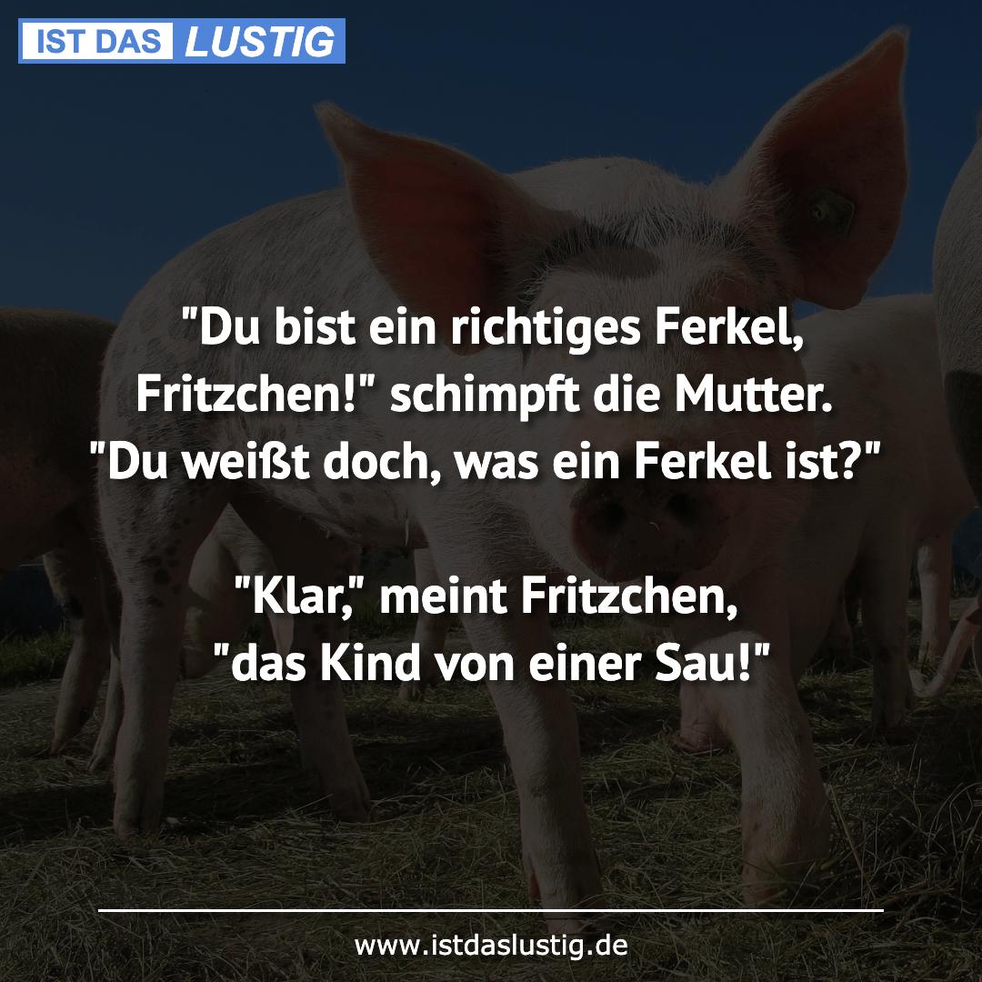 """Lustiger BilderSpruch - """"Du bist ein richtiges Ferkel, Fritzchen!""""..."""
