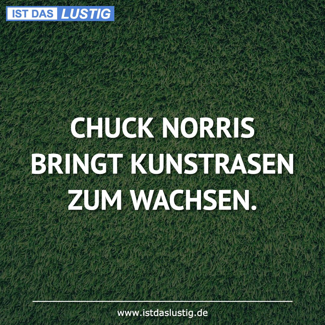 Lustiger BilderSpruch - CHUCK NORRIS BRINGT KUNSTRASEN ZUM WACHSEN.