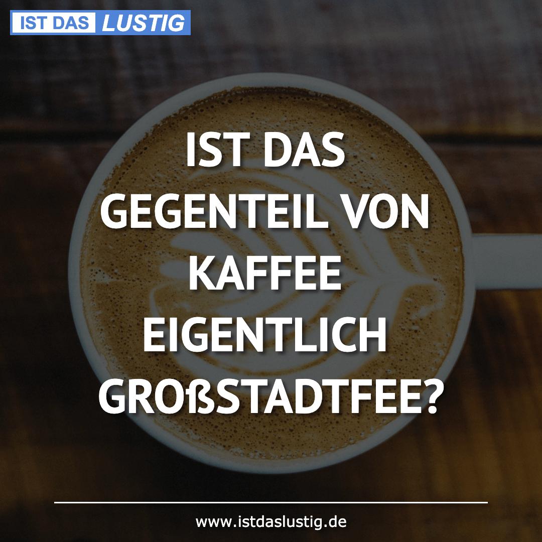 Lustiger BilderSpruch - IST DAS GEGENTEIL VON KAFFEE EIGENTLICH...