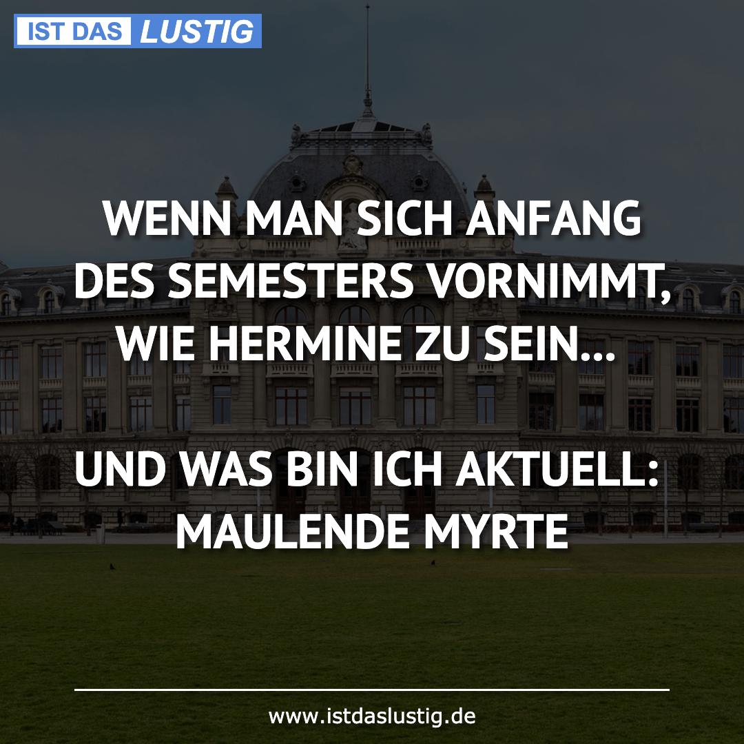 Lustiger BilderSpruch - WENN MAN SICH ANFANG DES SEMESTERS VORNIMMT,...