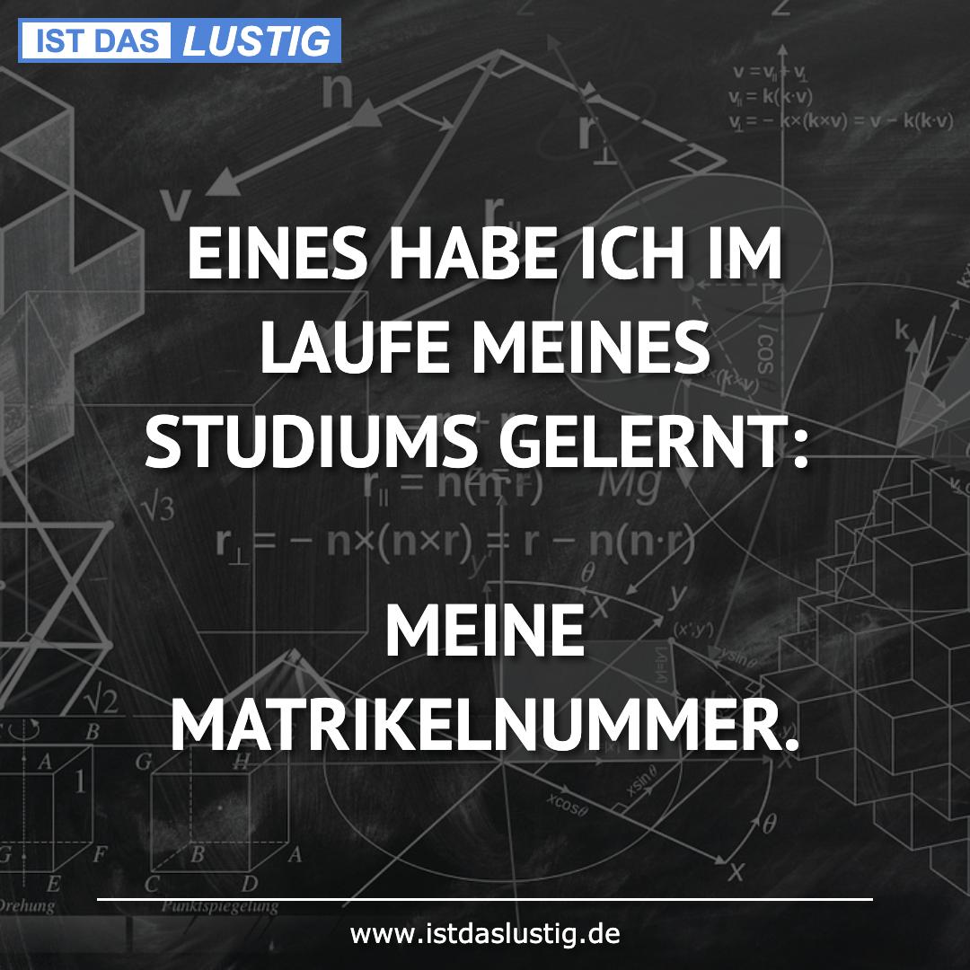 Lustiger BilderSpruch - EINES HABE ICH IM LAUFE MEINES STUDIUMS GELERNT...