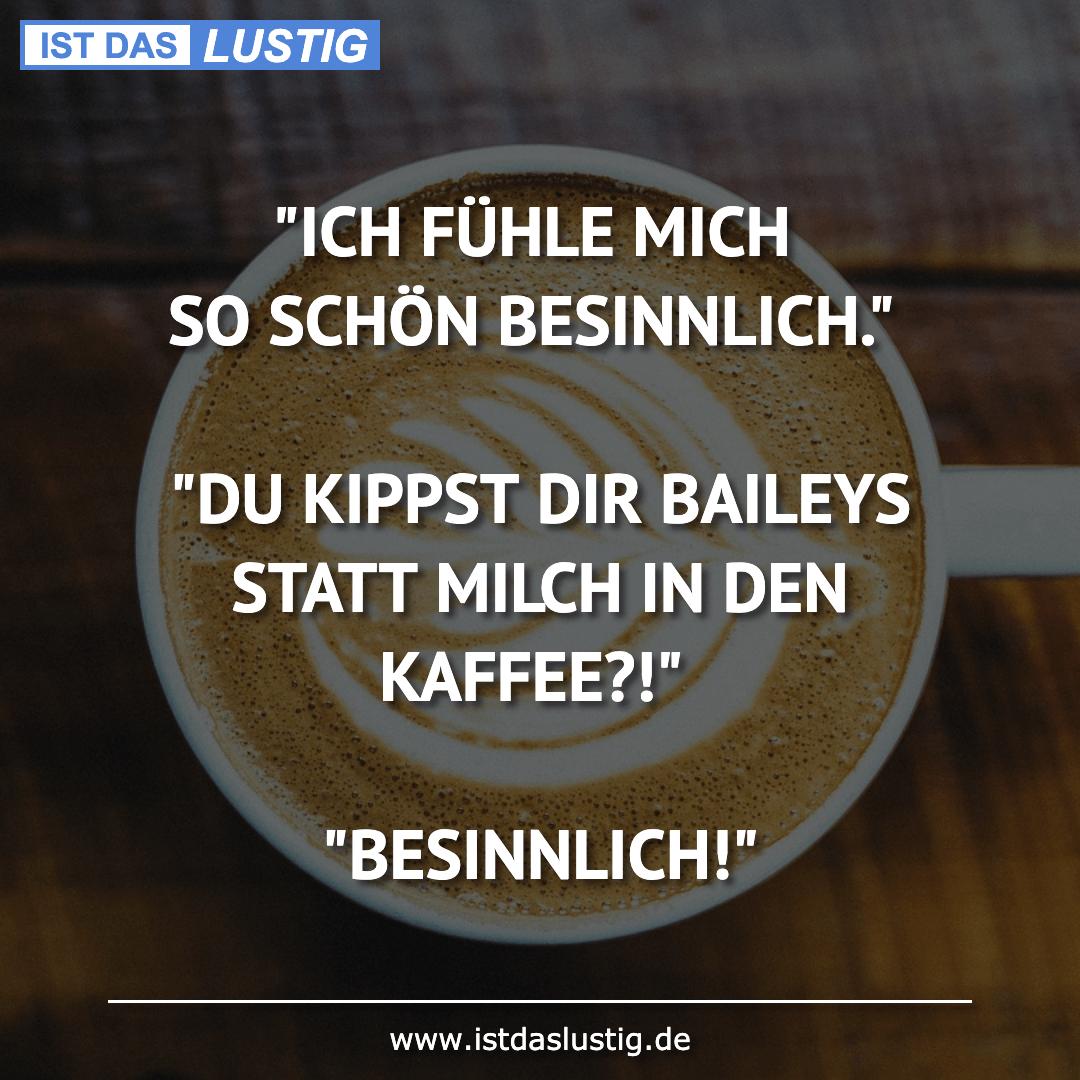 """Lustiger BilderSpruch - """"ICH FÜHLE MICH SO SCHÖN BESINNLICH.""""  """"DU..."""