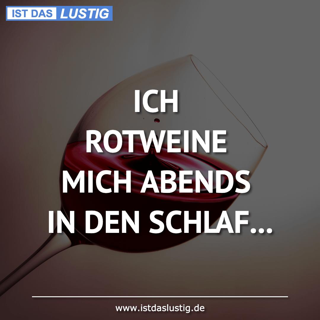 Lustiger BilderSpruch - ICH ROTWEINE MICH ABENDS IN DEN SCHLAF...