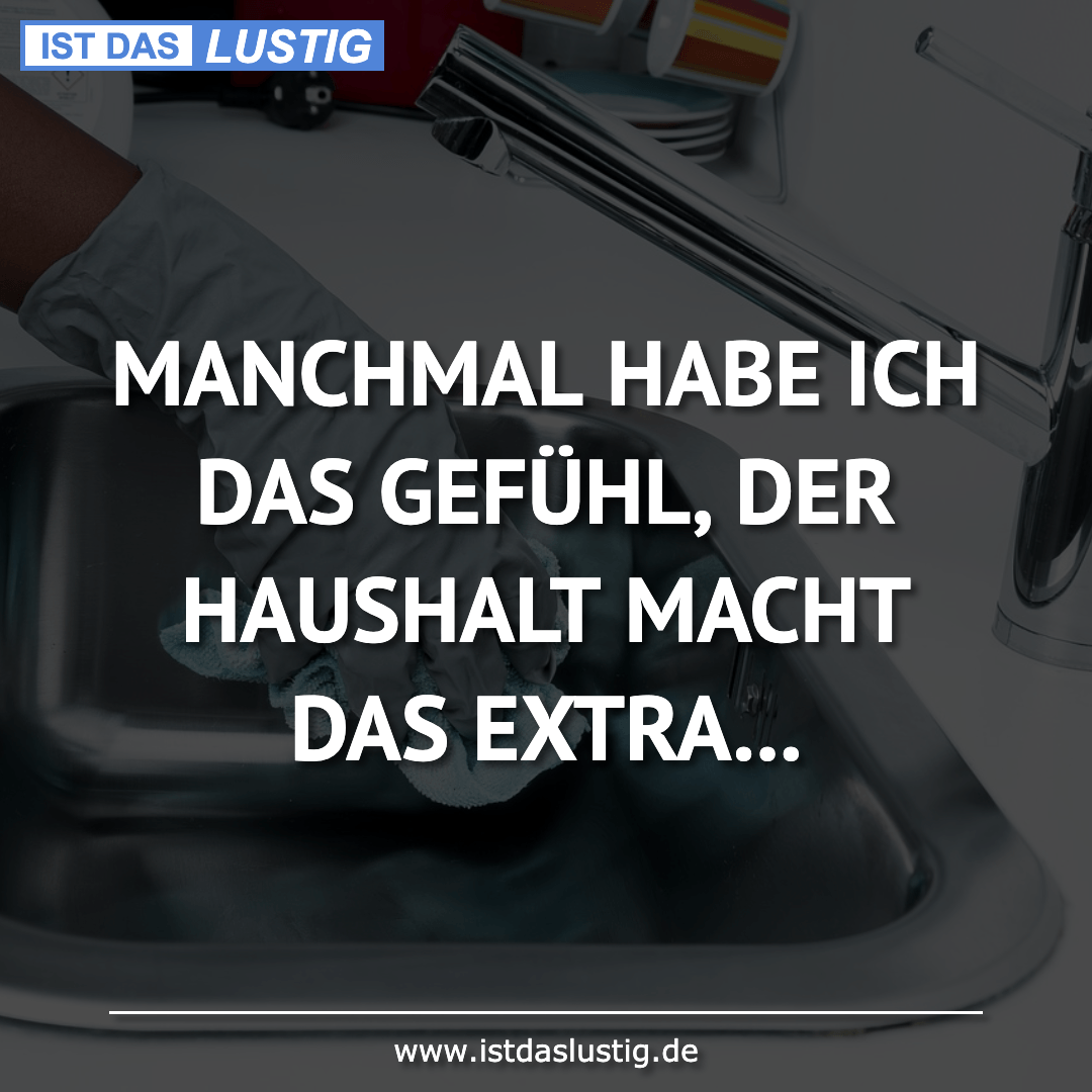Lustiger BilderSpruch - MANCHMAL HABE ICH DAS GEFÜHL, DER HAUSHALT...