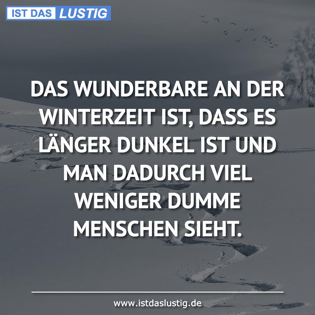 Lustiger BilderSpruch - DAS WUNDERBARE AN DER WINTERZEIT IST, DASS ES L...