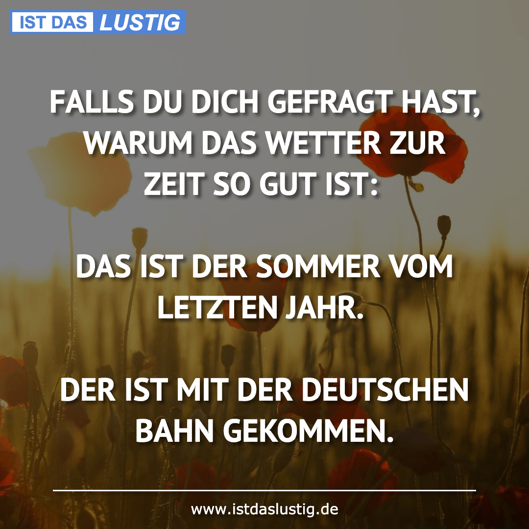 Lustiger BilderSpruch - FALLS DU DICH GEFRAGT HAST, WARUM DAS WETTER...