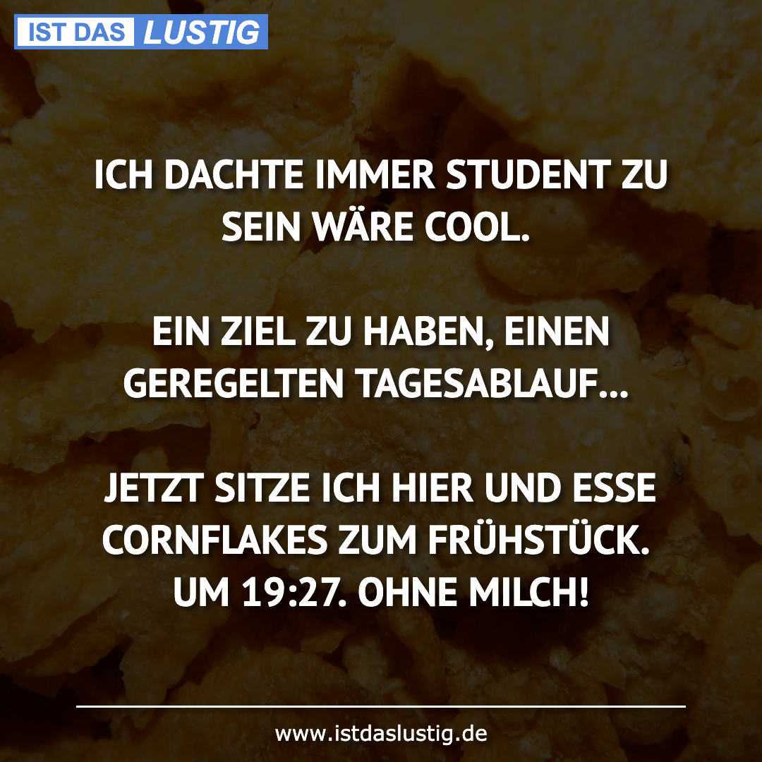 Lustiger BilderSpruch - ICH DACHTE IMMER STUDENT ZU SEIN WÄRE COOL....