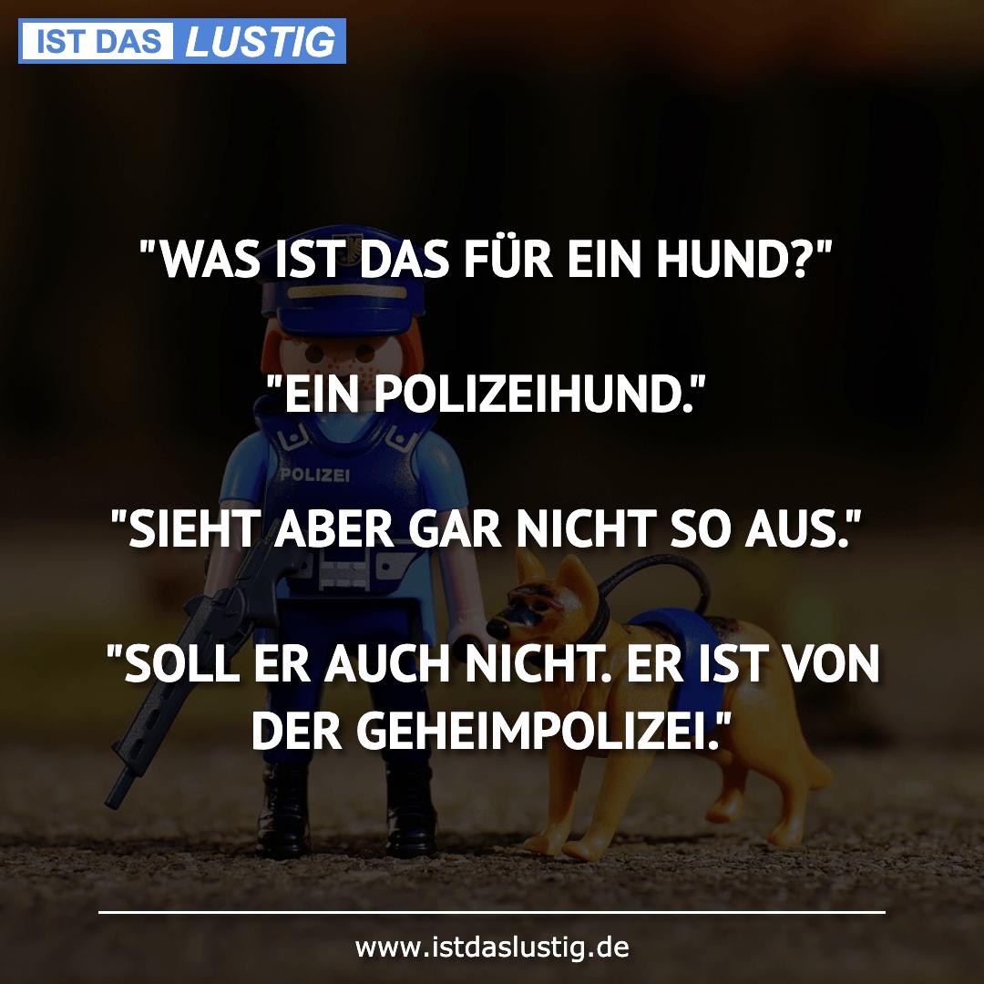 """Lustiger BilderSpruch - """"WAS IST DAS FÜR EIN HUND?""""  """"EIN..."""