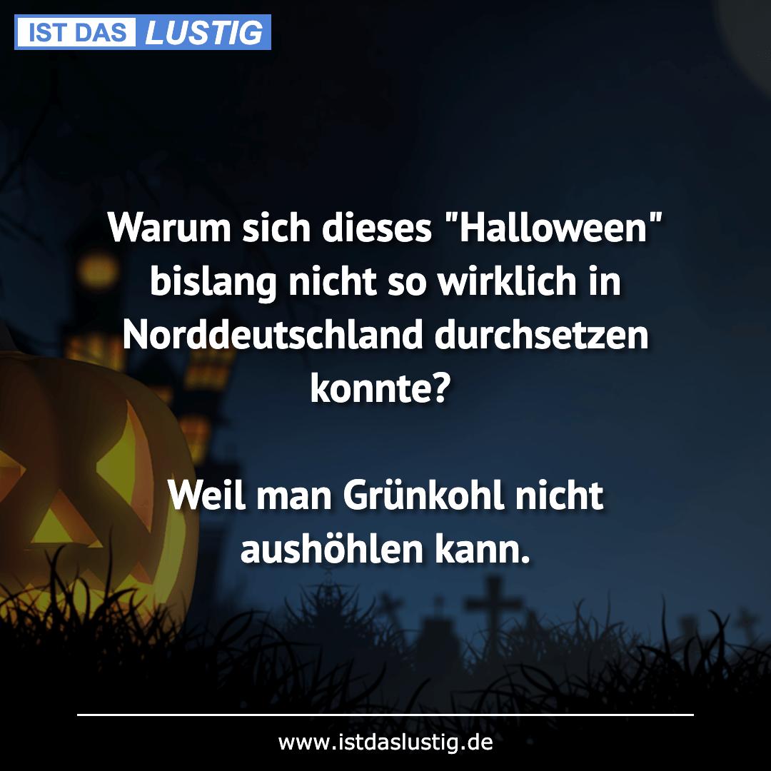 """Lustiger BilderSpruch - Warum sich dieses """"Halloween"""" bislang nicht so..."""