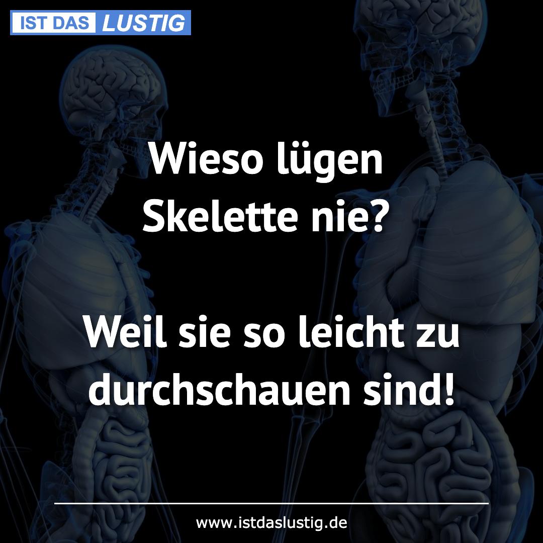 Lustiger BilderSpruch - Wieso lügen Skelette nie?  Weil sie so leicht...