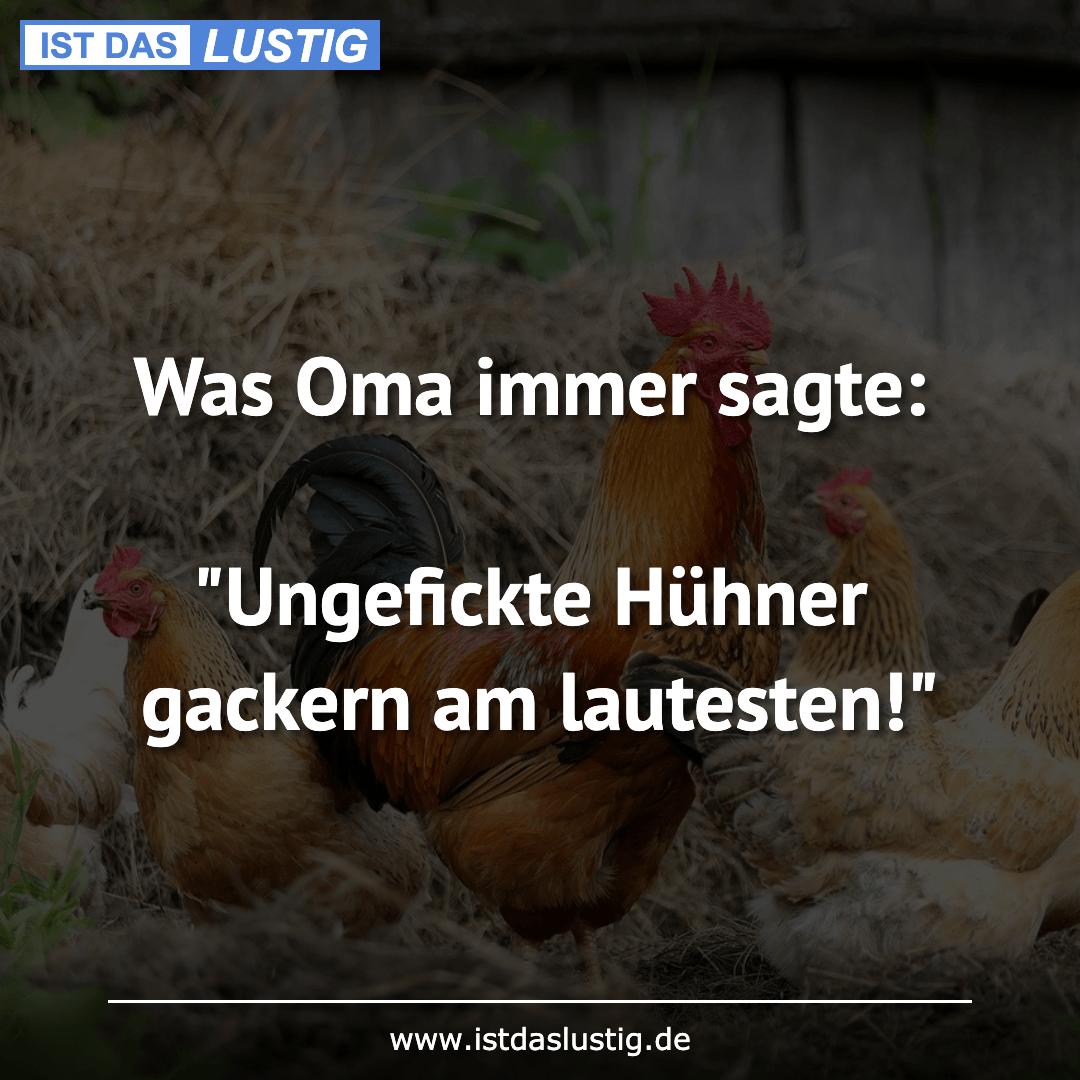 """Lustiger BilderSpruch - Was Oma immer sagte:  """"Ungefickte Hühner gackern..."""