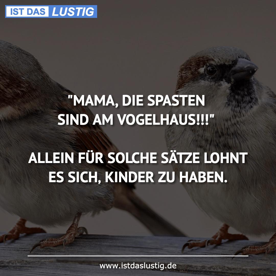 """Lustiger BilderSpruch - """"MAMA, DIE SPASTEN SIND AM VOGELHAUS!!!""""..."""