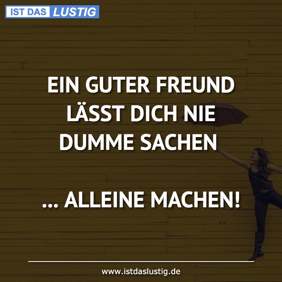 Lustiger BilderSpruch - EIN GUTER FREUND LÄSST DICH NIE DUMME SACHEN...
