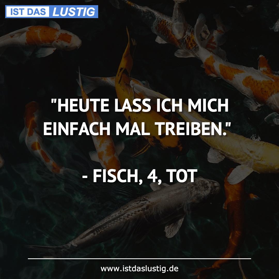 """Lustiger BilderSpruch - """"HEUTE LASS ICH MICH EINFACH MAL TREIBEN.""""  -..."""