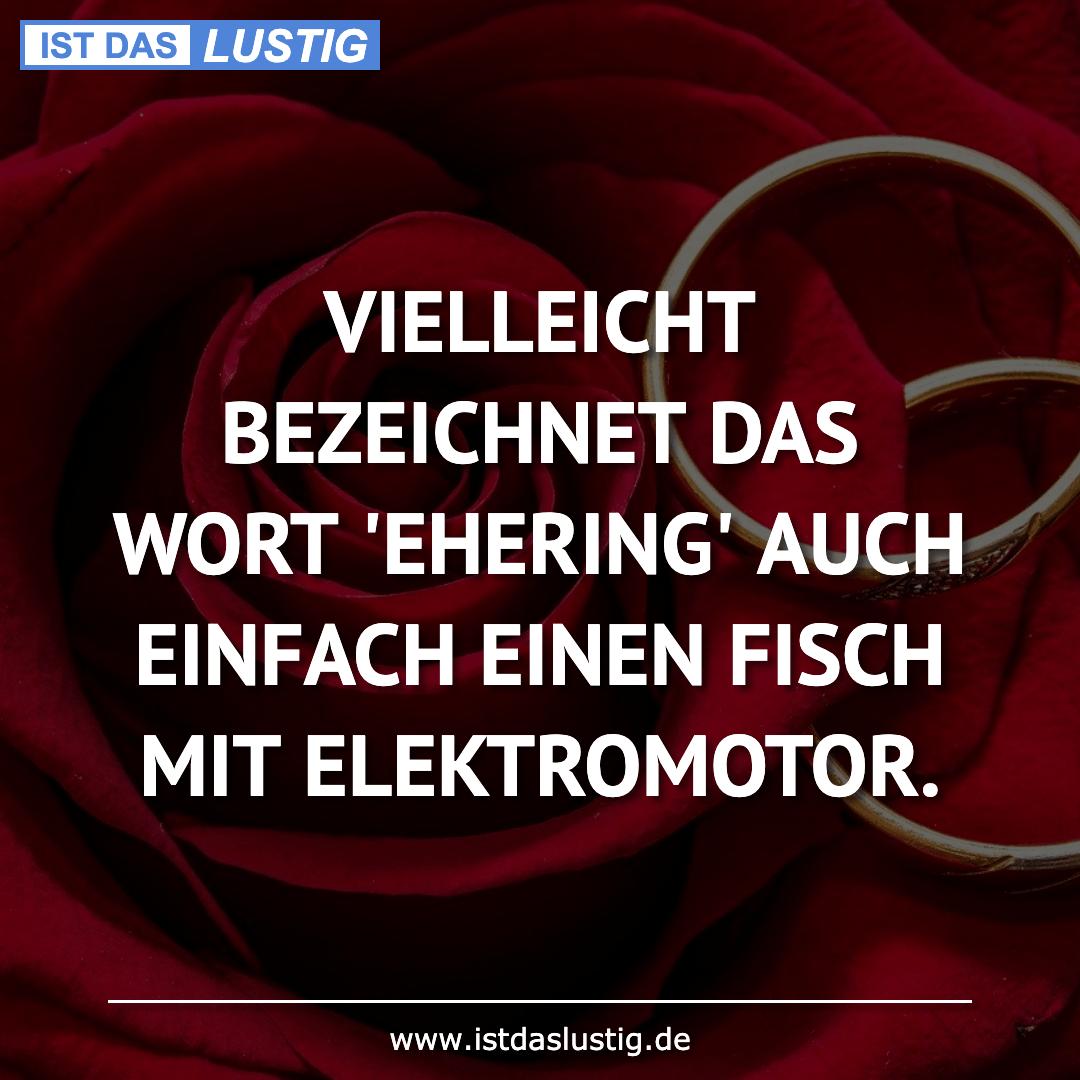 Lustiger BilderSpruch - VIELLEICHT BEZEICHNET DAS WORT 'EHERING' AUCH...